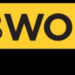 Wolfsburg Logo 2.png