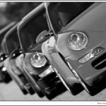 Porsche Parade Line.jpg