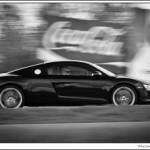 R8 in Motion.jpg